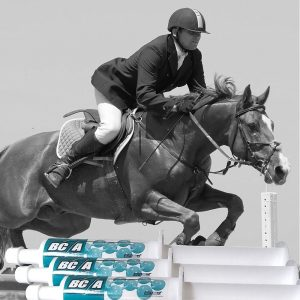 Equine Pre-Race Performance Paste – BC2A -2